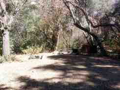 south-fork-campground-seqouia-national-park-09