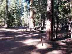 sunset-campground-sequoia-kings-canyon-national-park-03
