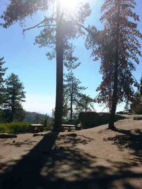 sunset-campground-sequoia-kings-canyon-national-park-13