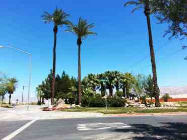 vineyards-rv-resort-coachella-01