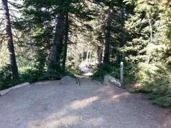 bountiful-peak-campground-wasatch-national-forest-08