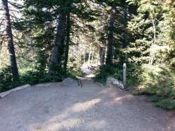 bountiful-peak-campground-wasatch-national-forest-08