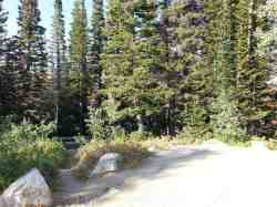 bountiful-peak-campground-wasatch-national-forest-10