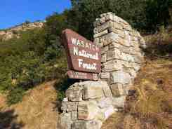 bountiful-peak-campground-wasatch-national-forest-18
