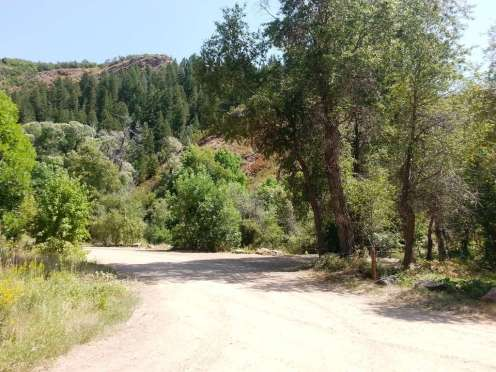 South Fork Campground Huntsville Utah Rv Park