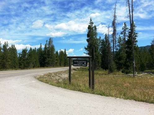 sheffield-campground-teton-forest-01