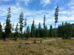 sheffield-campground-teton-forest-09