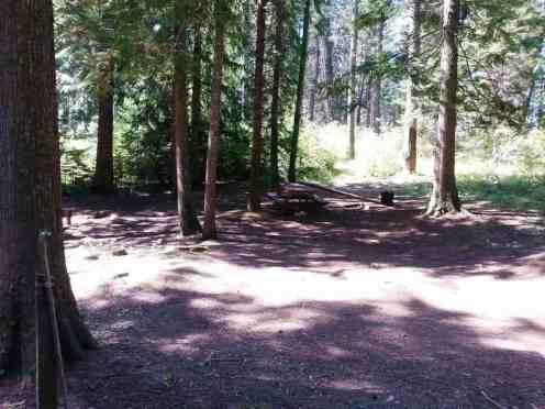 pend-oreille-county-park-newport-wa-04