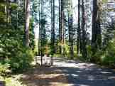 priest-river-mudhole-campground-02