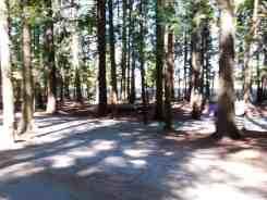 priest-river-mudhole-campground-05
