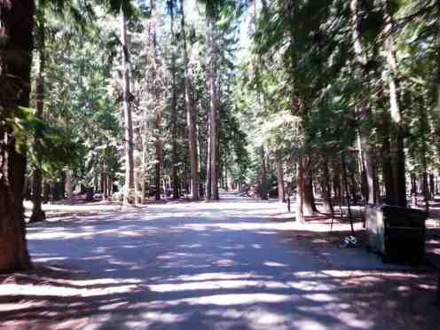 priest-river-mudhole-campground-07
