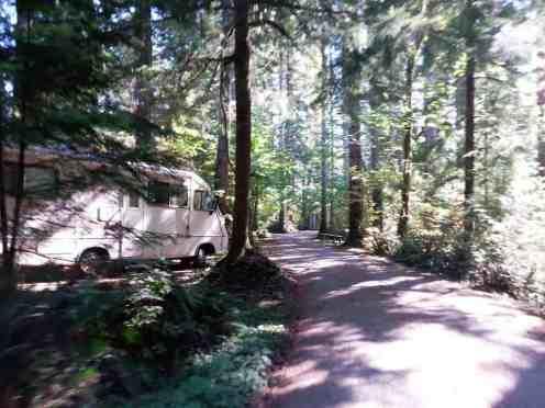 bear-creek-campground-port-angeles-wa-11