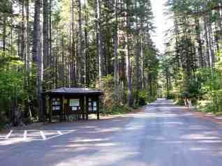 big-creek-campground-hoodsport-wa-02