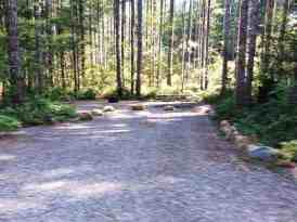big-creek-campground-hoodsport-wa-07