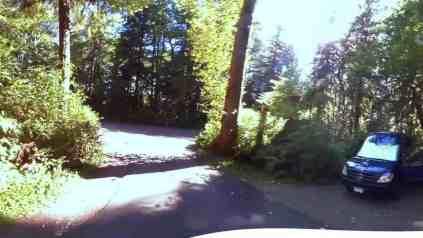 Bogachiel State Park Campground