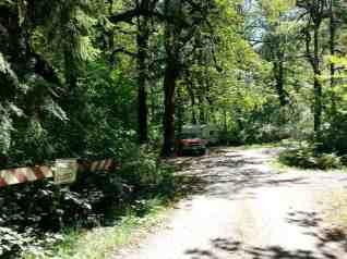 collins-campground-brinnon-wa-02