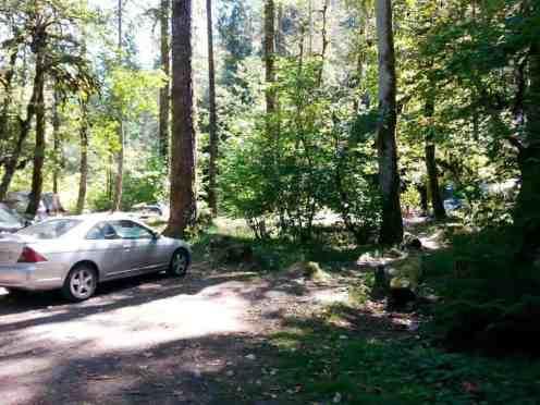 collins-campground-brinnon-wa-06