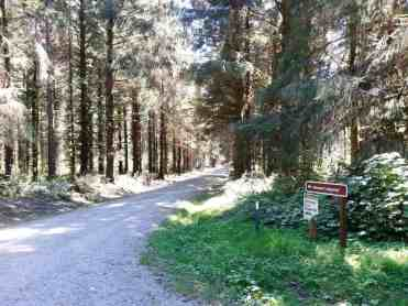 cottonwood-campground-washington-dnr-hoh-1
