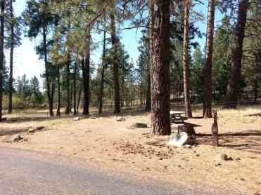 dragoon-creek-campground-creston-wa-07
