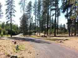 dragoon-creek-campground-creston-wa-08