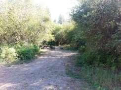 dragoon-creek-campground-creston-wa-12
