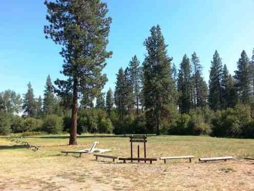 dragoon-creek-campground-creston-wa-15
