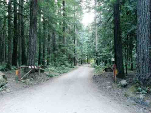 dungeness-forks-campground-sequim-wa-03