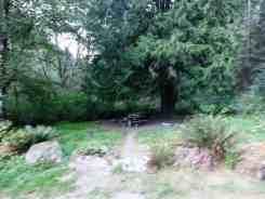 dungeness-forks-campground-sequim-wa-06