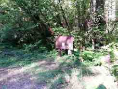 elkhorn-campground-olympic-national-forest-09