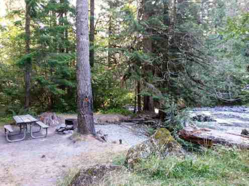 elkhorn-campground-olympic-national-forest-10