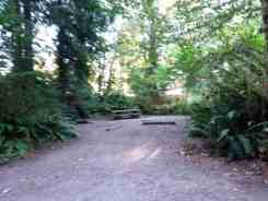 falls-creek-campground-quinault-wa-08