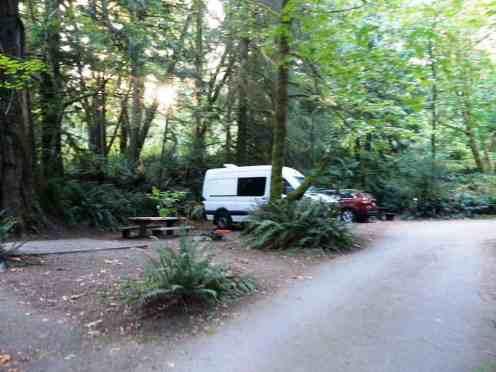 falls-creek-campground-quinault-wa-09
