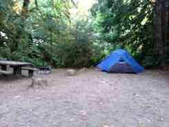 falls-creek-campground-quinault-wa-12