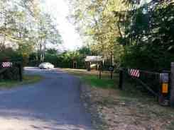 gatton-creek-campground-quinault-wa-2