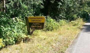 hamma-hamma-campground-wa-01