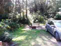 hoh-oxbow-campground-wa-5