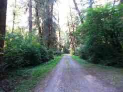 klahanie-campground-wa-09
