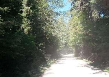 klahowya-campground-wa-0103