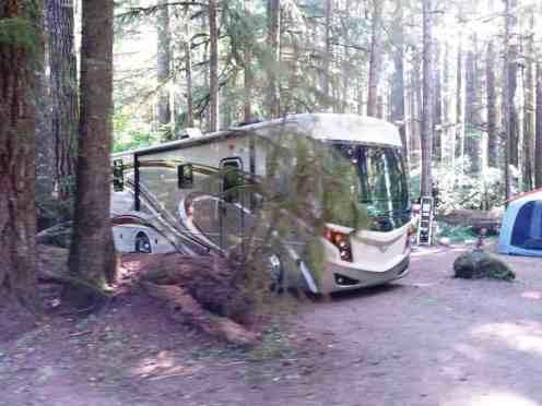 klahowya-campground-wa-0118