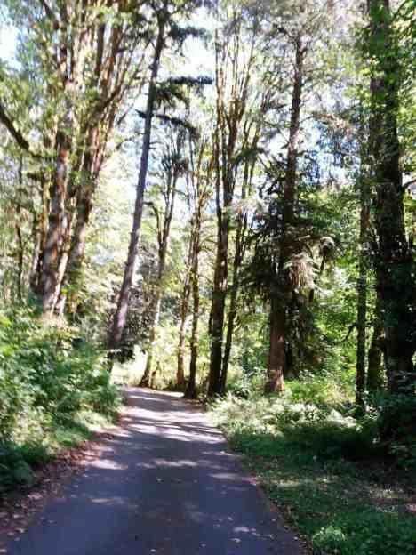 lena-creek-campground-05