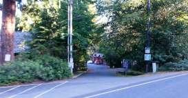 rainforest-resort-village-quinault-wa-9