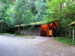 willaby-campground-quinault-wa-11