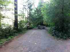 willaby-campground-quinault-wa-12