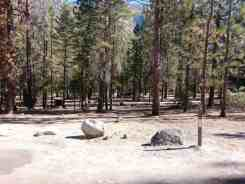 canyon-view-campground-sequoia-kings-canyon-national-park-05