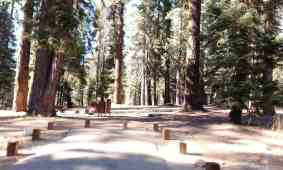 stony-creek-campground-sequoia-01