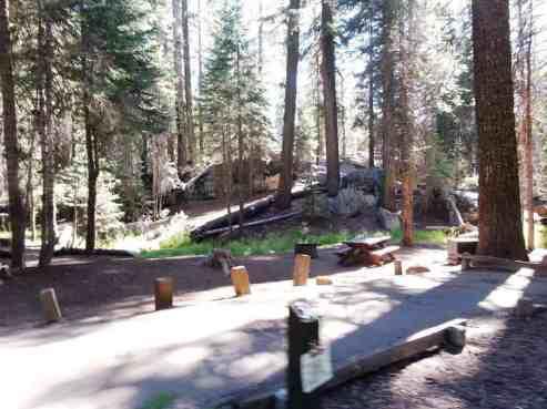 stony-creek-campground-sequoia-06