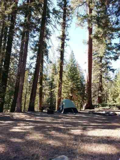 upper-stony-creek-campground-sequoia-3