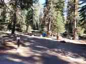upper-stony-creek-campground-sequoia-4