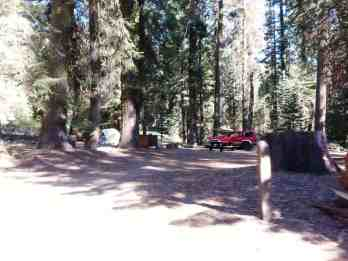 upper-stony-creek-campground-sequoia-5