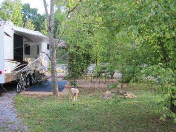 up-the-creek-rv-camp